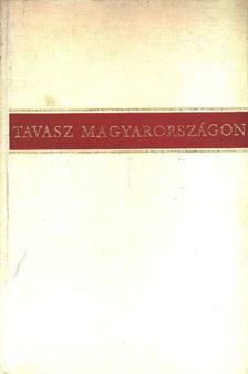 Illés Lajos - Tavasz Magyarországon [antikvár]