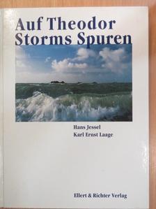 Karl Ernst Laage - Auf Theodor Storms Spuren [antikvár]