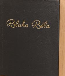 Tóth Pál - Blaha Béla (minikönyv) (számozott) [antikvár]
