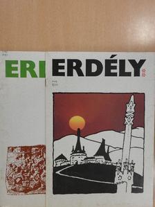 Barta Gábor - Erdély I-II. [antikvár]
