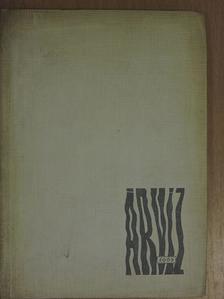 Bertalan István - Árvíz 1965 [antikvár]