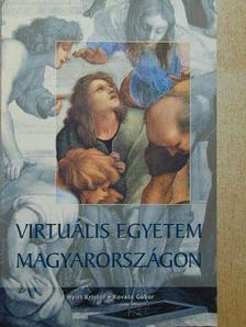 Benedek András - Virtuális egyetem Magyarországon [antikvár]