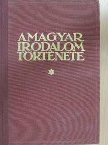 Endrődi Sándor - A magyar irodalom története 1900-ig [antikvár]