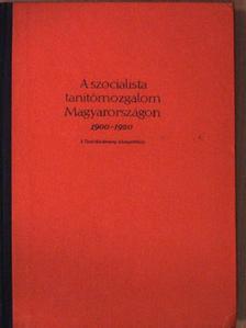 Bihari Mór - A szocialista tanítómozgalom Magyarországon 1900-1920 [antikvár]