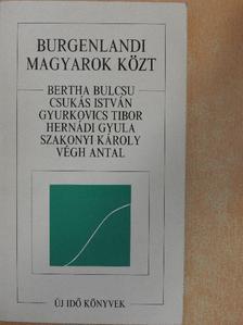 Bertha Bulcsu - Burgenlandi magyarok közt [antikvár]
