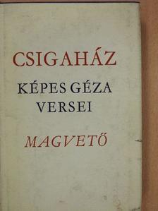 Képes Géza - Csigaház [antikvár]