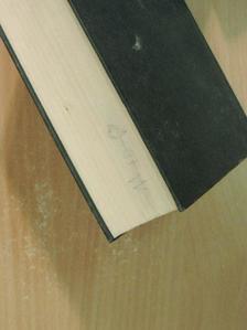 Isabel Allende - Das Geisterhaus [antikvár]
