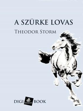Theodor Storm - A szürke lovas [eKönyv: epub, mobi]