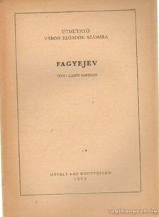 Lányi Sarolta - Fagyejev [antikvár]
