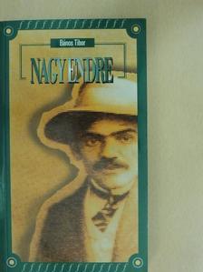 Bános Tibor - Nagy Endre [antikvár]