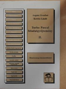 Angster Erzsébet - Turbo Pascal feladatgyűjtemény II. [antikvár]