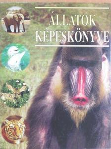 Mesterházyné Egenhoffer Olga - Állatok képeskönyve [antikvár]