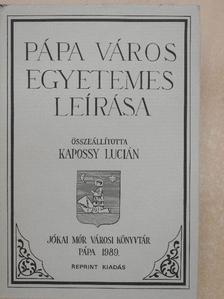 Barcsi József - Pápa város egyetemes leírása [antikvár]