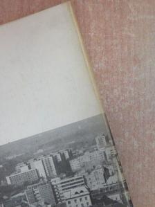 Bakó Endre - Alföld 1975. április [antikvár]
