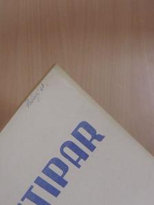 Fekete László - Pamutipar 1965/6. [antikvár]