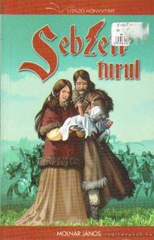 Molnár János - Sebzett turul [antikvár]