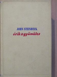 John Steinbeck - Érik a gyümölcs [antikvár]