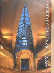 Aknai Tamás - Kortárs művészet - Pécs - 2 db DVD-vel [antikvár]