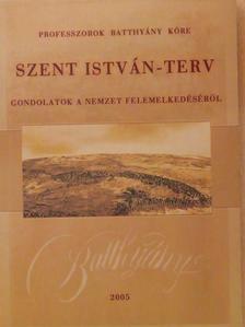 Ács Margit - Szent István-terv [antikvár]