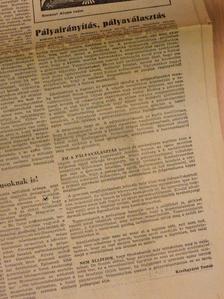 Bajor Nagy Ernő - Pedagógusok Lapja 1981. január-december [antikvár]