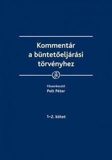 Péter (főszerk.) dr. Polt - Kommentár a büntetőeljárási törvényhez [eKönyv: epub, mobi]