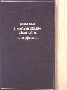 Juhász Géza - A magyar szellem vándorútja [antikvár]