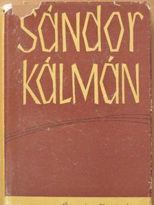 Sándor Kálmán - Éjszaka Európában [antikvár]