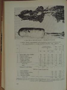 Bakos Zsuzsanna - 1968. évi országos fajtakísérletek [antikvár]