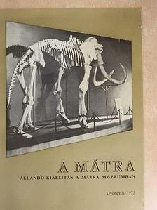 Dr. Nagy Gyula - A Mátra [antikvár]