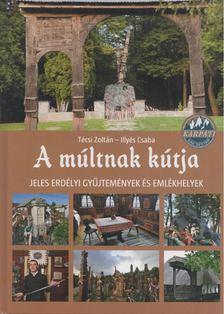 Técsi Zoltán - Illyés Csaba - A múltnak kútja [antikvár]