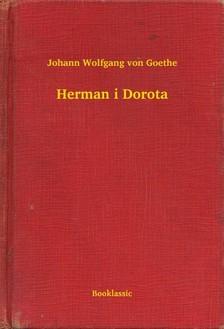 Johann Wolfgang Goethe - Herman i Dorota [eKönyv: epub, mobi]