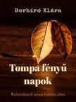 Klára Borbíró - Tompa fényű napok [eKönyv: pdf, epub, mobi]