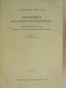 Asbóth Dénes - Didaktikai olvasmánygyűjtemény [antikvár]