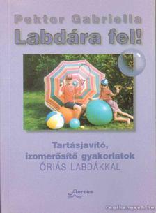 Pektor Gabriella - Labdára fel! [antikvár]