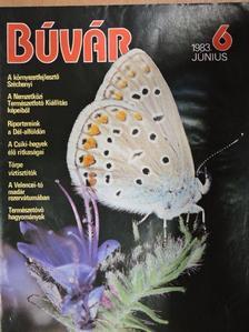 Schmidt Egon - Búvár 1983. június [antikvár]