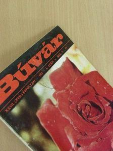 Dr. Bolgár Ferenc - Búvár 1972. november [antikvár]